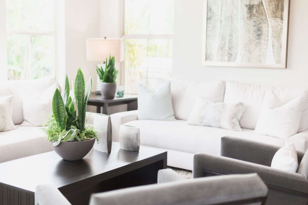 A calm and serene living room with positive vibes and energy