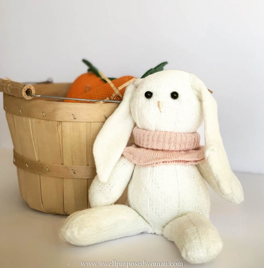Elizabeth from A Well-Purposed Woman came up with this adorable Easter Bunny using socks.