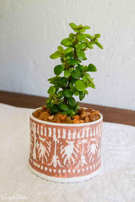 Junette at Windmill & Protea diy'ed this Boho terracotta planter using a ceramic container.