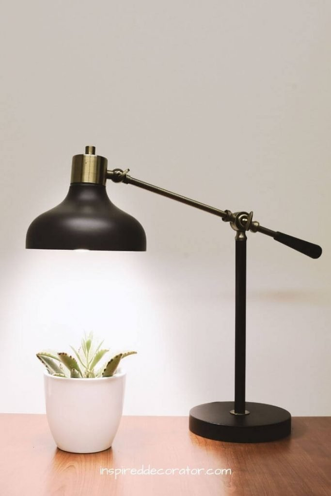 The desk lamp has it's light focused on the plant beneath it. An example of task lighting.