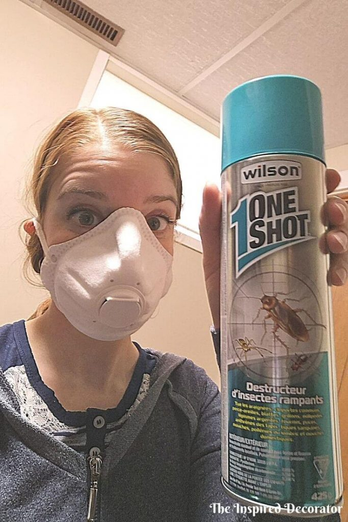Wilson One Shot bug spray took care of the nest of flies trying to move into the home office.